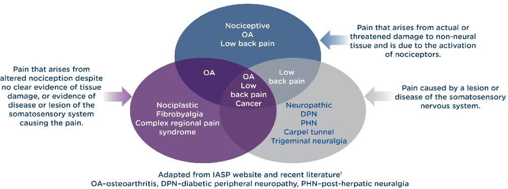 Pathophysiology of pain